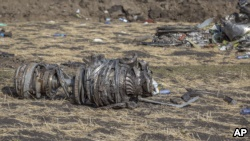 Airplane parts lie on the ground at the scene of an Ethiopian Airlines flight crash near Bishoftu, or Debre Zeit, south of Addis Ababa, Ethiopia, Monday, March 11, 2019. (AP Photo/Mulugeta Ayene)