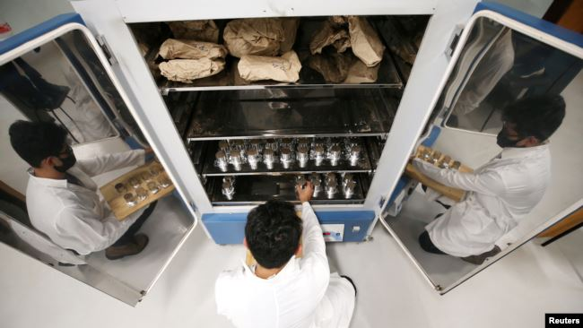 Brazilian forestry student Mateus Sanquetta separates material collected in the Amazon to check how much climate-warming greenhouse gas a small plot of the rainforest can contain at the Federal University of Parana in Curitiba, Brazil, December 1, 2020.